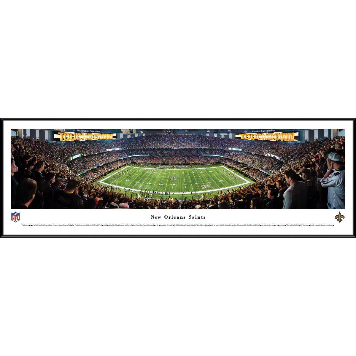 "New Orleans Saints 14"" x 40"" Standard Frame Panoramic Photo"