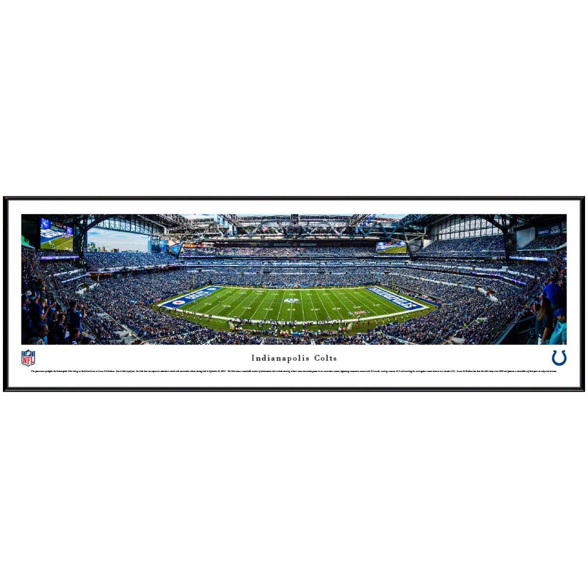 "Indianapolis Colts 40.25"" x 13.75"" Standard Frame Panoramic Photo"