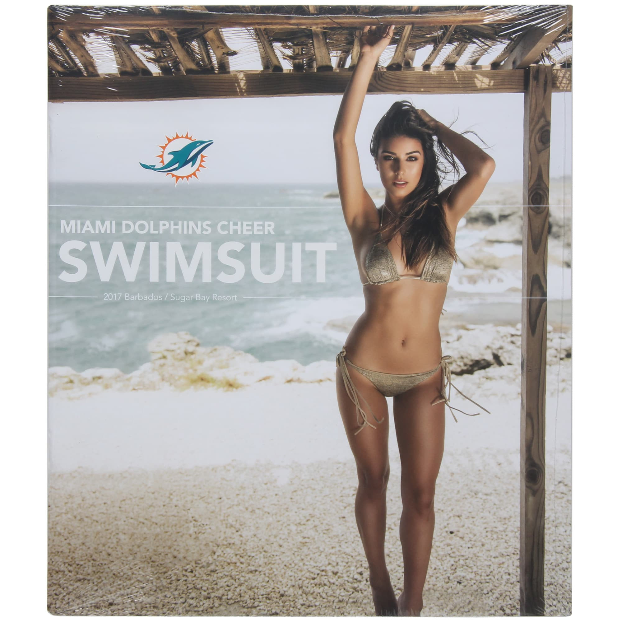 "Miami Dolphins 12"" x 12"" 2017 Cheerleaders Wall Calendar"
