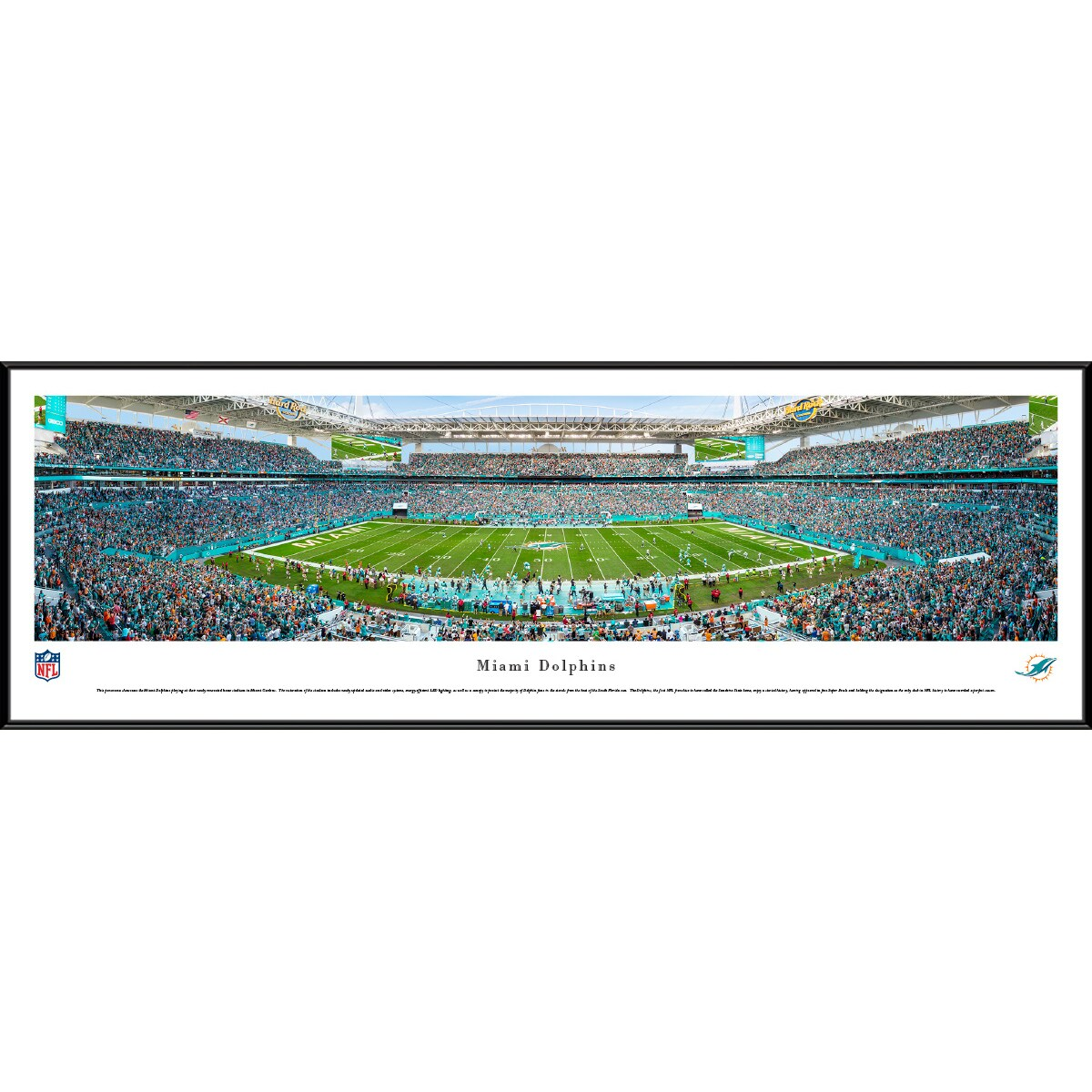 "Miami Dolphins 14"" x 40"" Standard Frame Panoramic Photo"