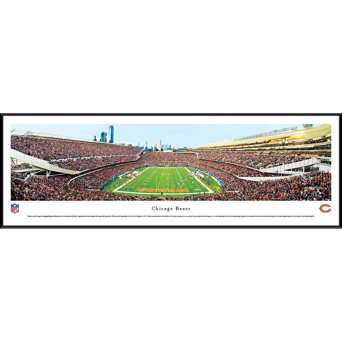 """Chicago Bears 40.25"""" x 13.75"""" End Zone Standard Framed Panoramic Photo"""