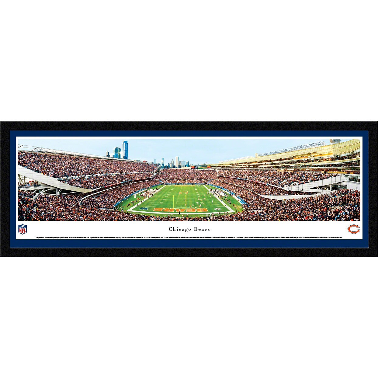 "Chicago Bears 16"" x 42"" Endzone Select Frame Panoramic Photo"