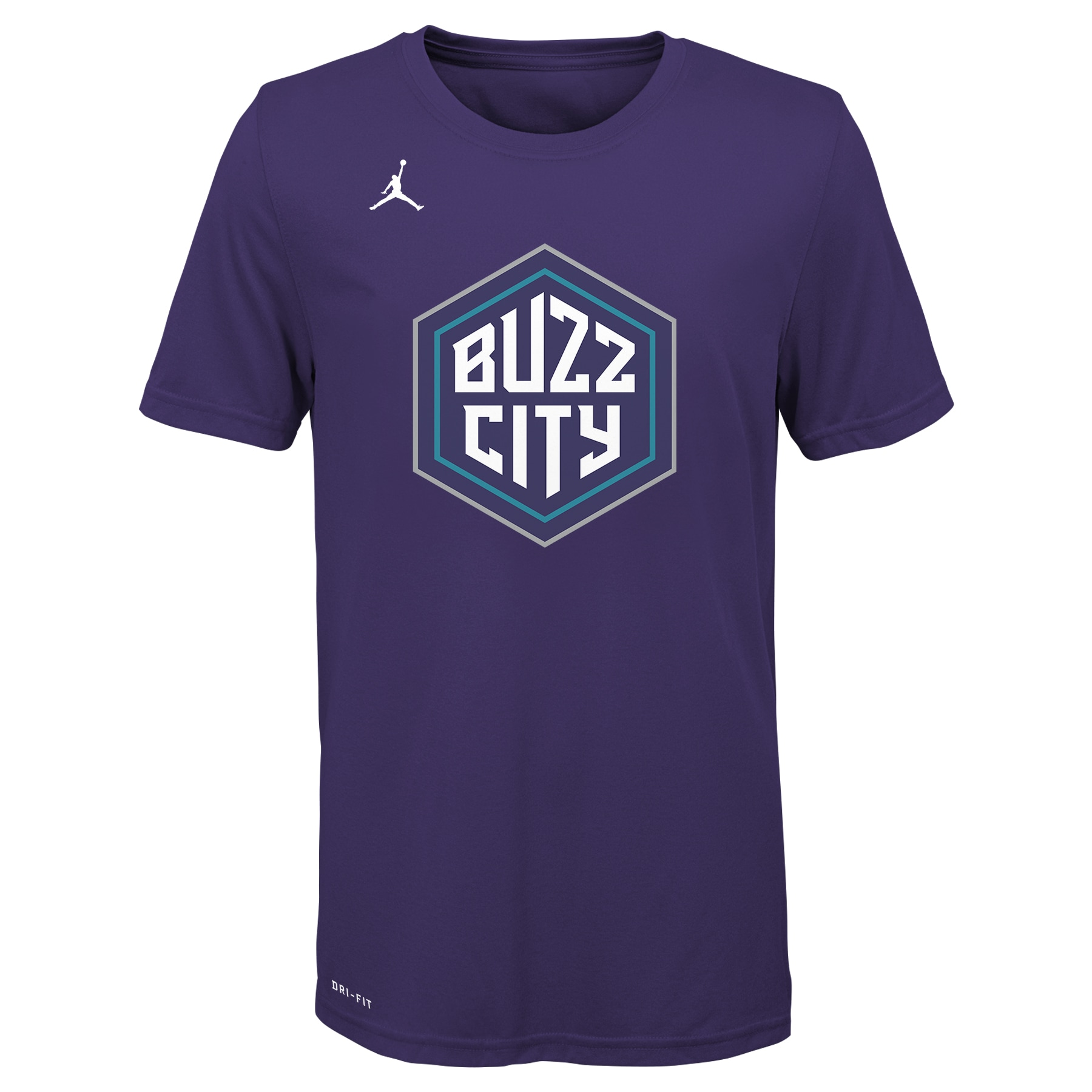 Charlotte Hornets Jordan Brand Youth 2019/20 City Edition Logo T-Shirt - Purple