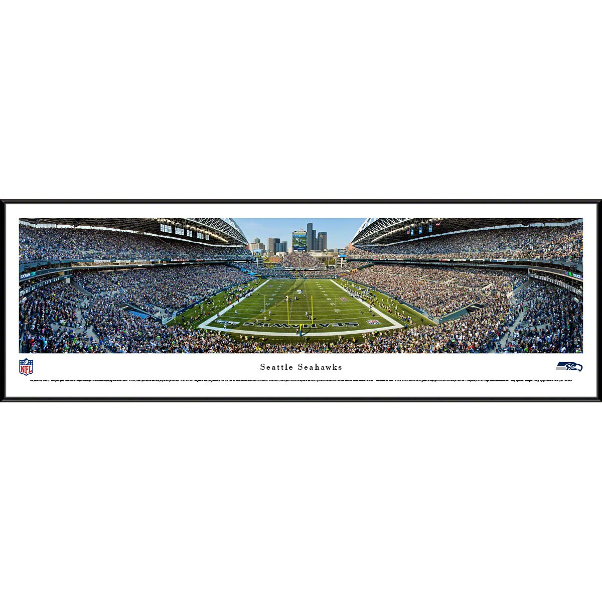 "Seattle Seahawks 40.25"" x 13.75"" End Zone Standard Framed Panoramic Photo"