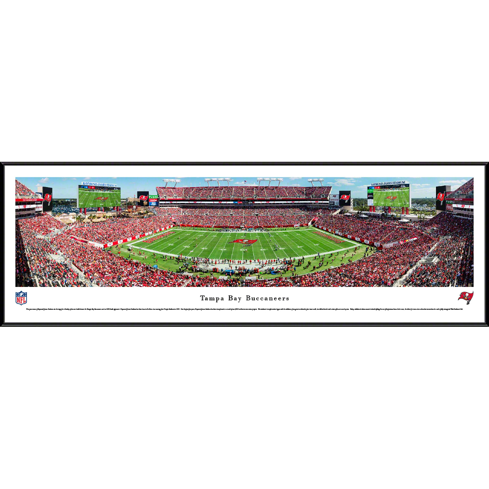 "Tampa Bay Buccaneers 40.25"" x 13.75"" 50-Yard Line Standard Framed Panoramic"