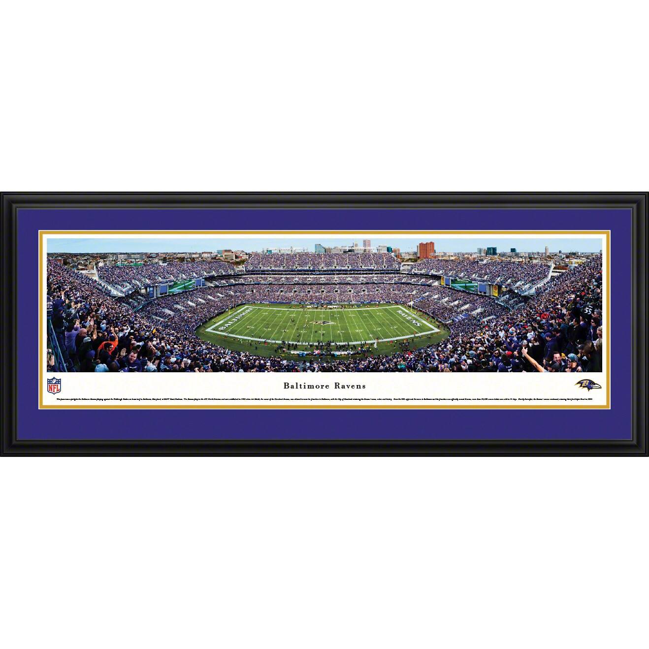"Baltimore Ravens 18"" x 44"" Deluxe Frame Panoramic Photo"