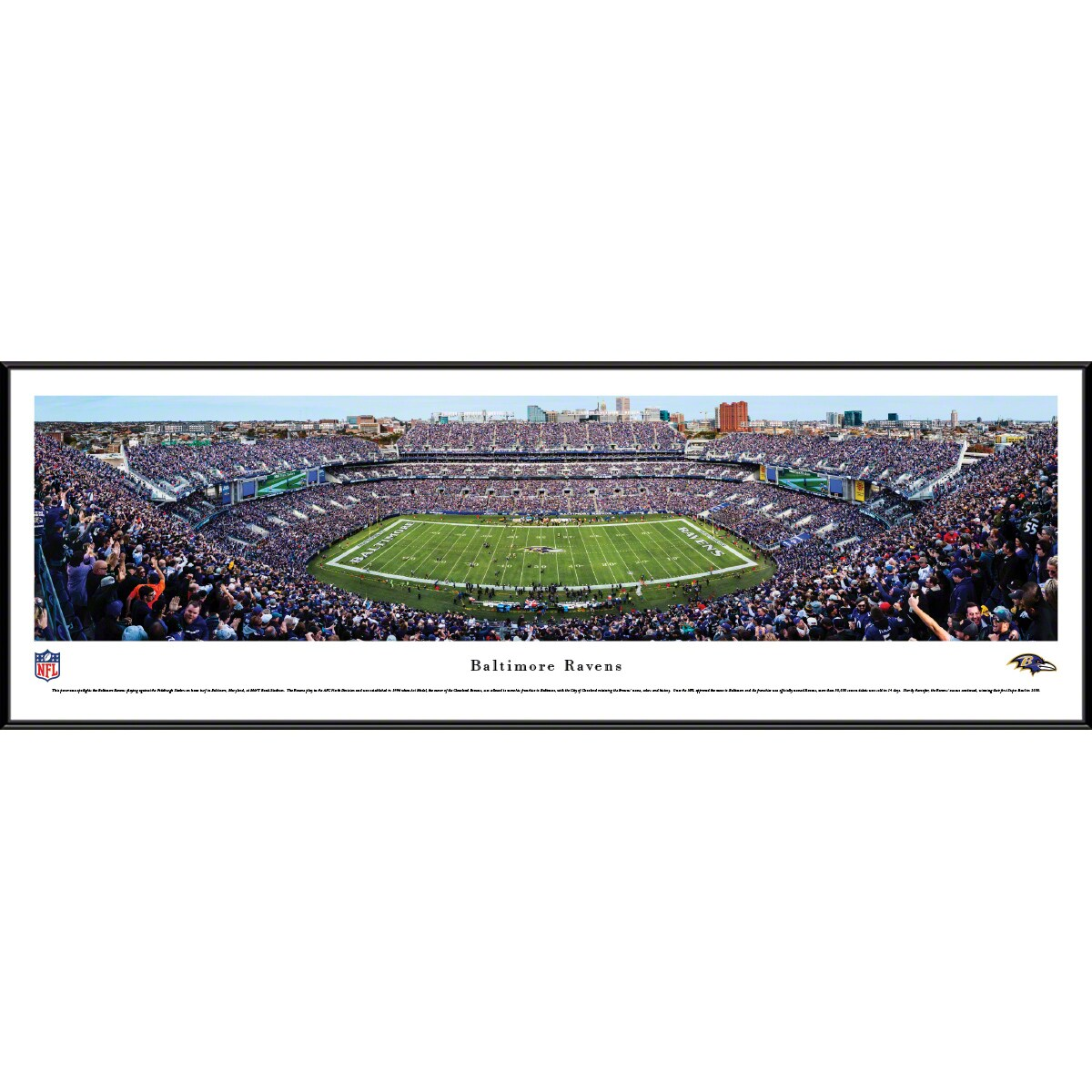 "Baltimore Ravens 14"" x 40"" Standard Frame Panoramic Photo"