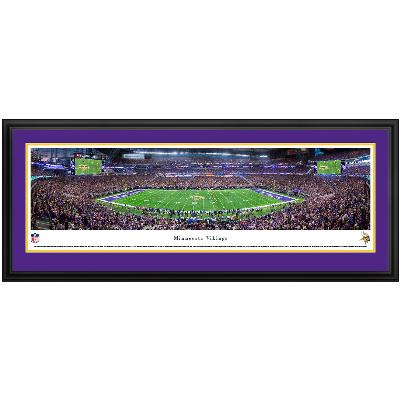 "Minnesota Vikings 44"" x 18"" Deluxe Frame Panoramic Photo"
