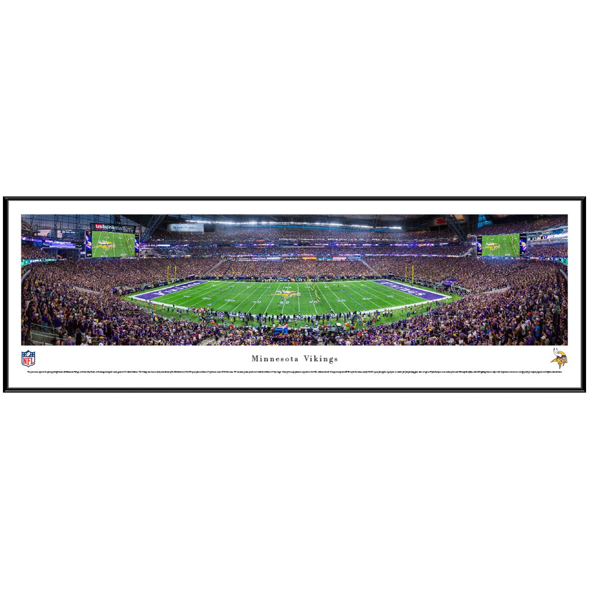 "Minnesota Vikings 40.25"" x 13.75"" Standard Frame Panoramic Photo"