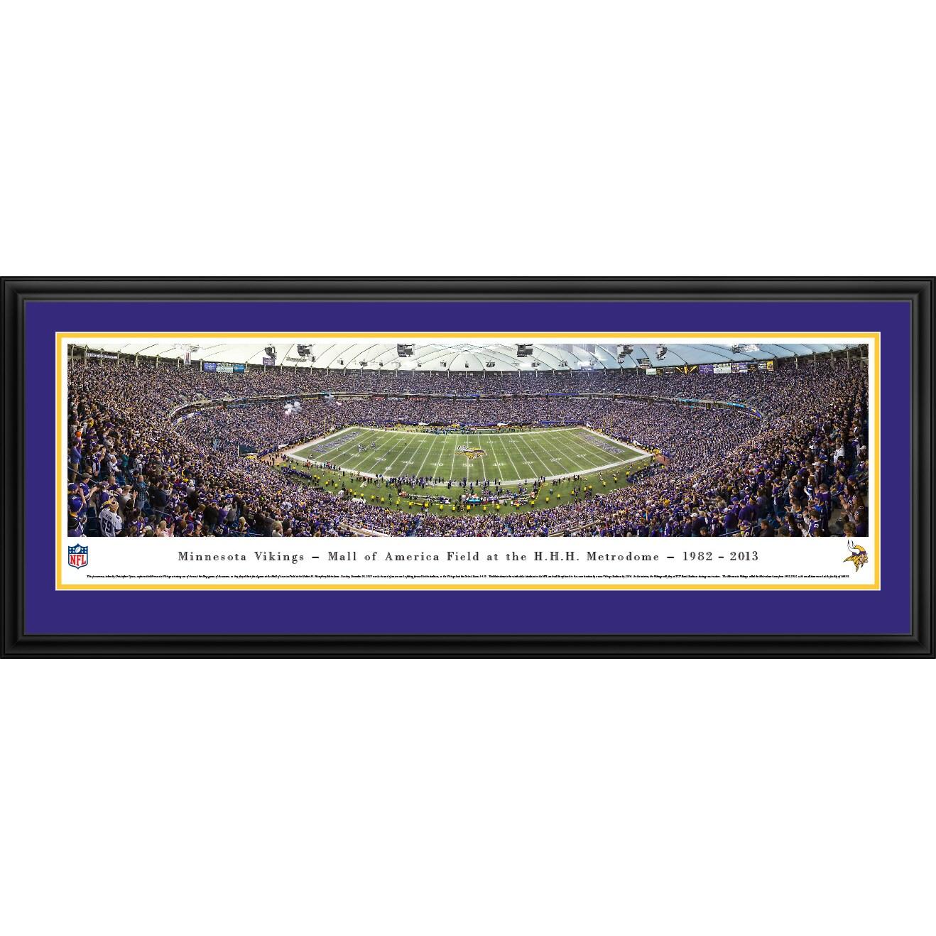 "Minnesota Vikings 18"" x 44"" Deluxe Frame Panoramic Photo"