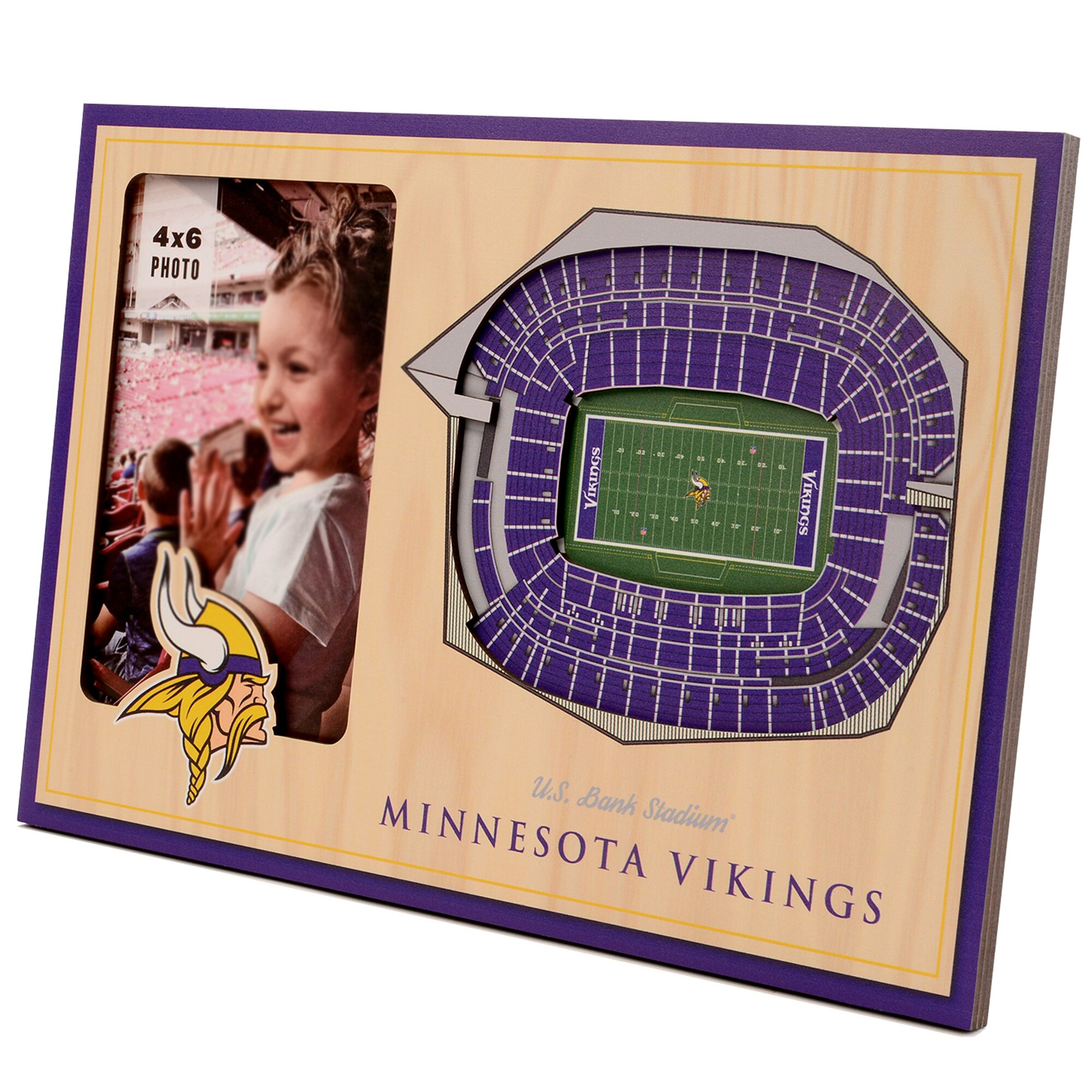 Minnesota Vikings 3D StadiumViews Picture Frame - Brown