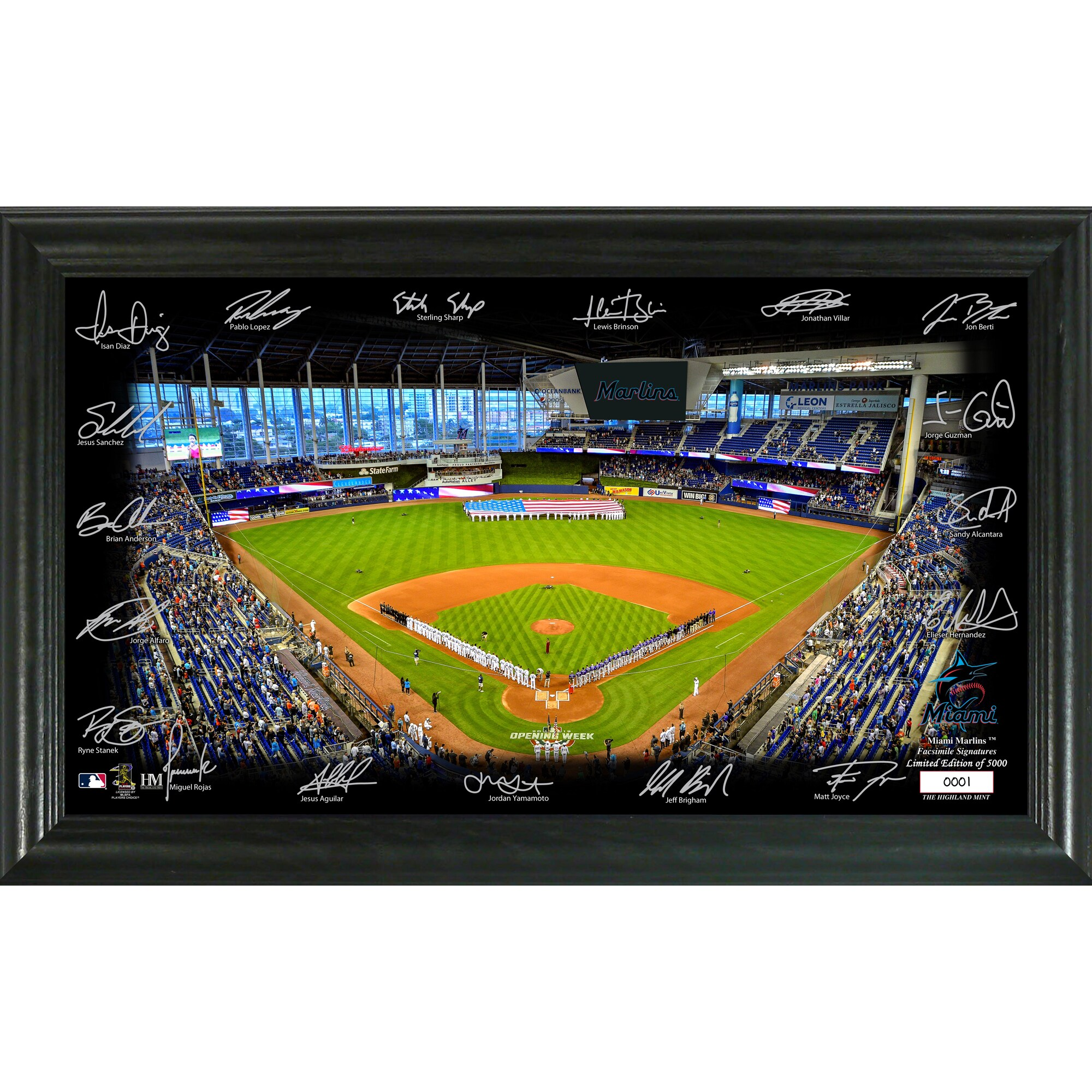 Miami Marlins Highland Mint 12'' x 20'' Signature Field Limited Editon Framed Photo Mint