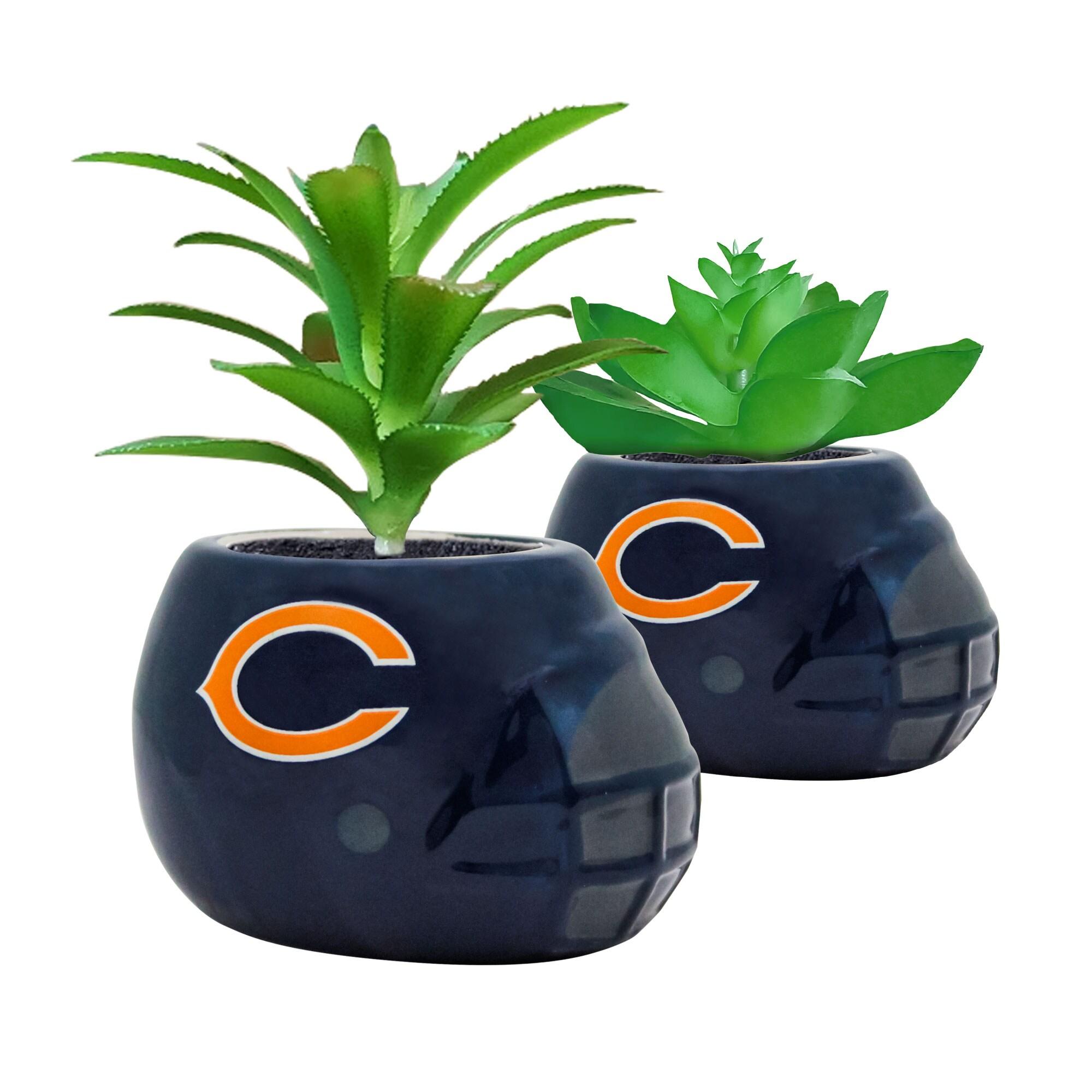 Chicago Bears 2-Piece Ceramic Helmet with Faux Succulent Set