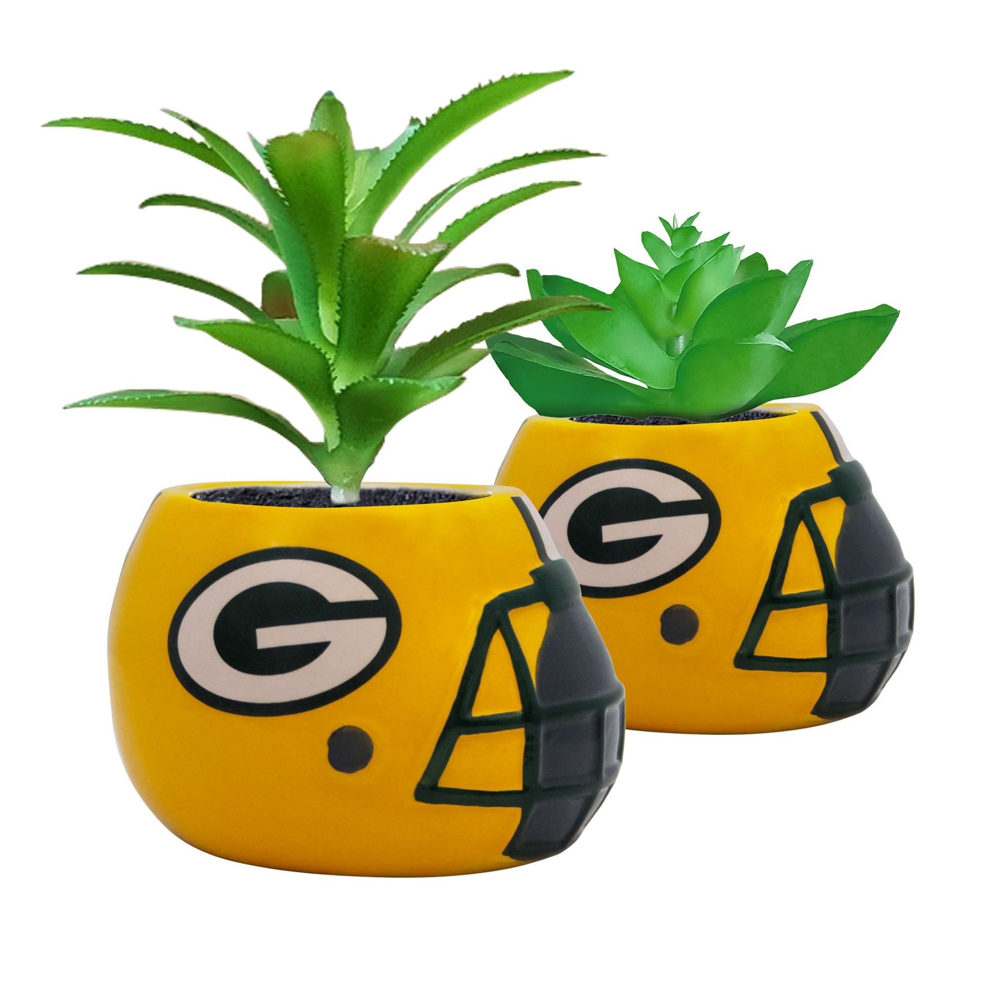 Green Bay Packers 2-Piece Ceramic Helmet with Faux Succulent Set