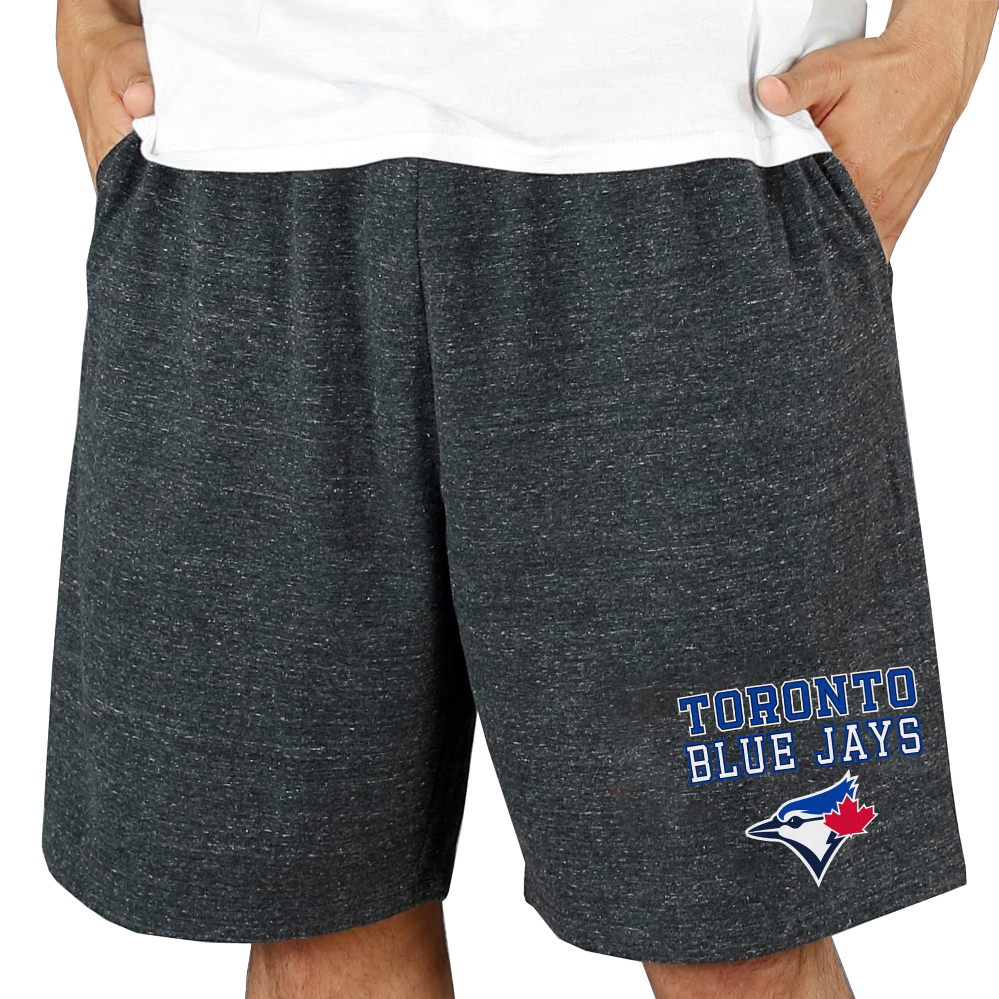 Toronto Blue Jays Concepts Sport Pitch Knit Jam Shorts - Charcoal
