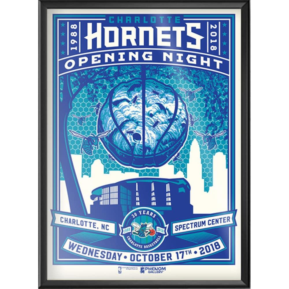 Charlotte Hornets 18'' x 24'' Framed Serigraph